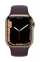 Apple Watch Series 7 Edelstahl Gold