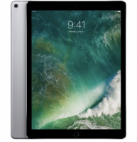 "Apple iPad Pro 12,9"" (1. Generation), 32GB, Wi-Fi, Spacegrau"